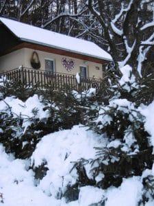 Zima v záhrade